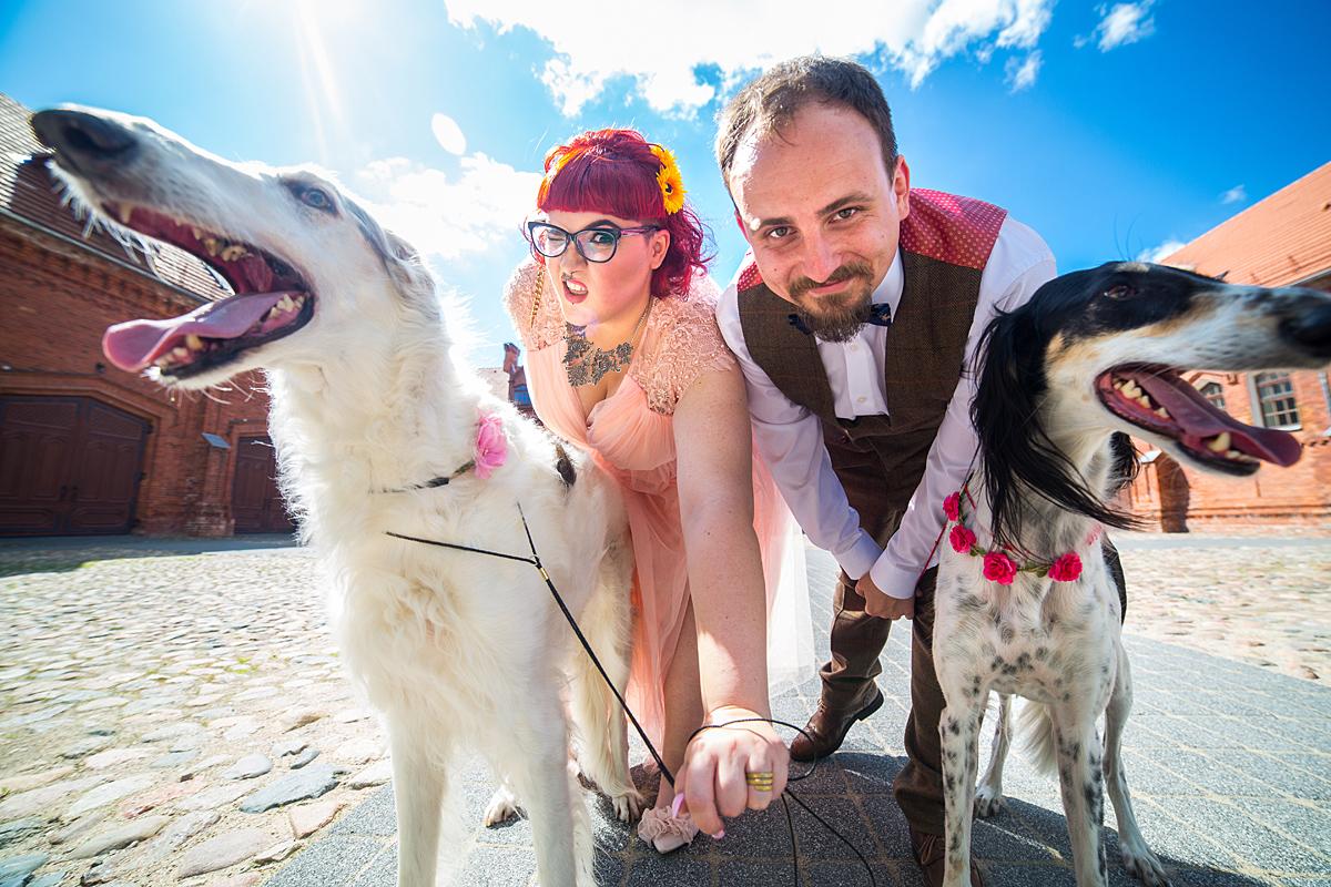 jaunieji, vestuvių nuotrauka, šunys, platus kampas, raudondvaris