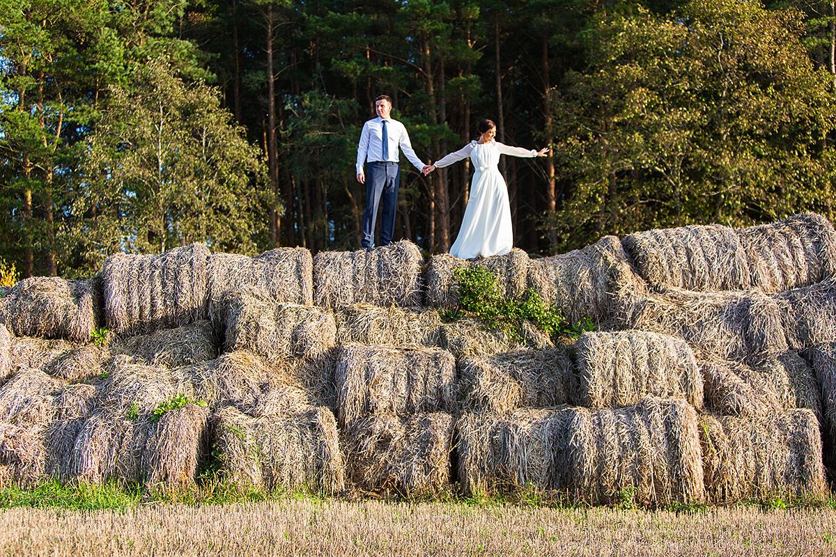 šiaudai, laukas, jaunieji ant šiaudų, gamta, neįprasta lokacija