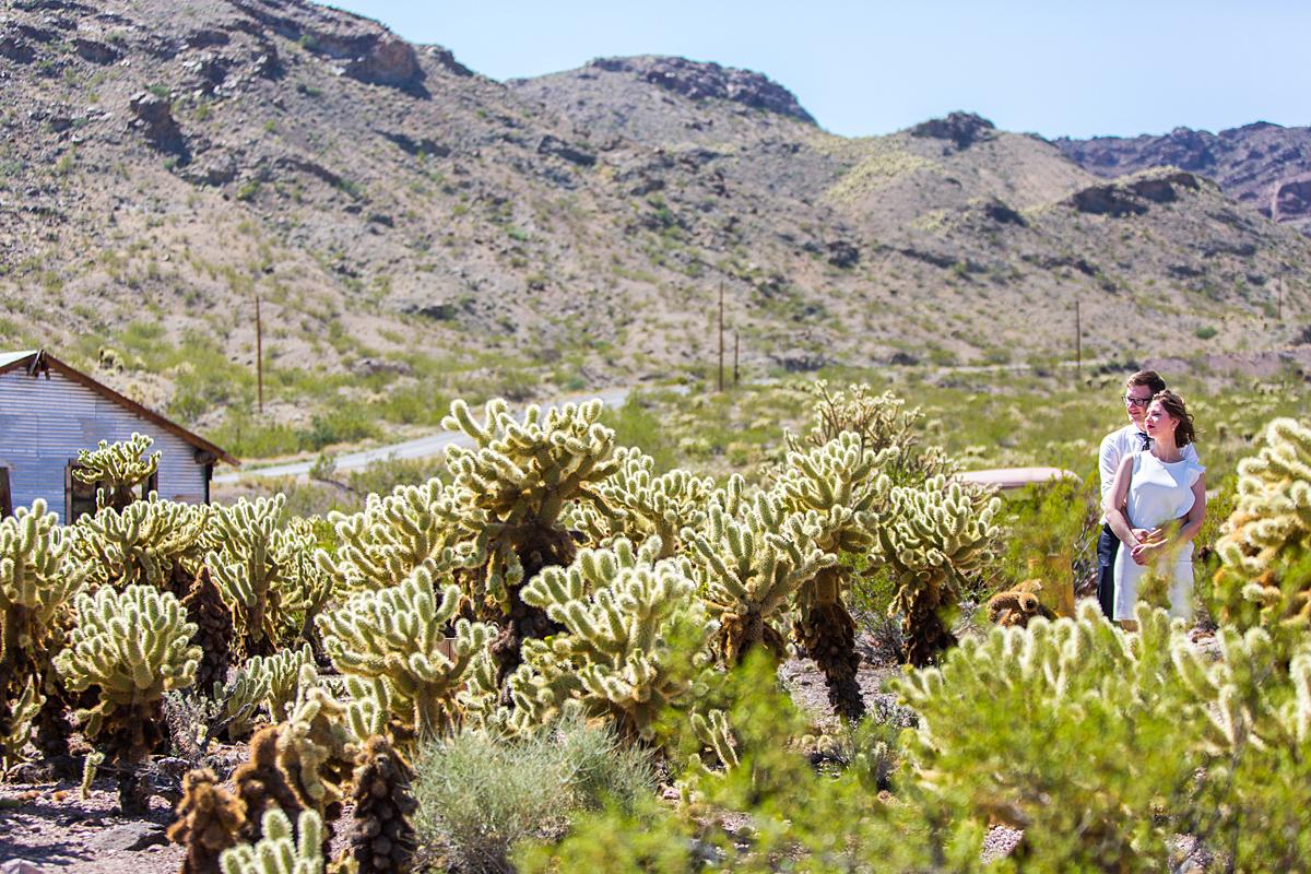 kaktusai, dykuma, kalnai, amerika, las vegas, vestuvės amerikoje, nelson ghost town