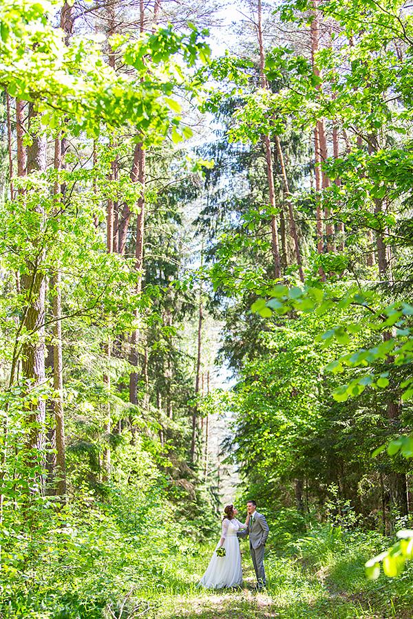 miškas, miške, properša, žalia, vasara, vestuvinis kadras
