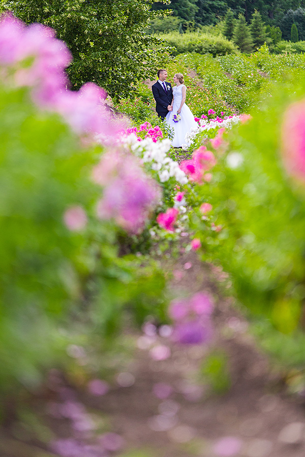 botanikos sodas, gėlės, žiedai, vestuvių kadras, vasara