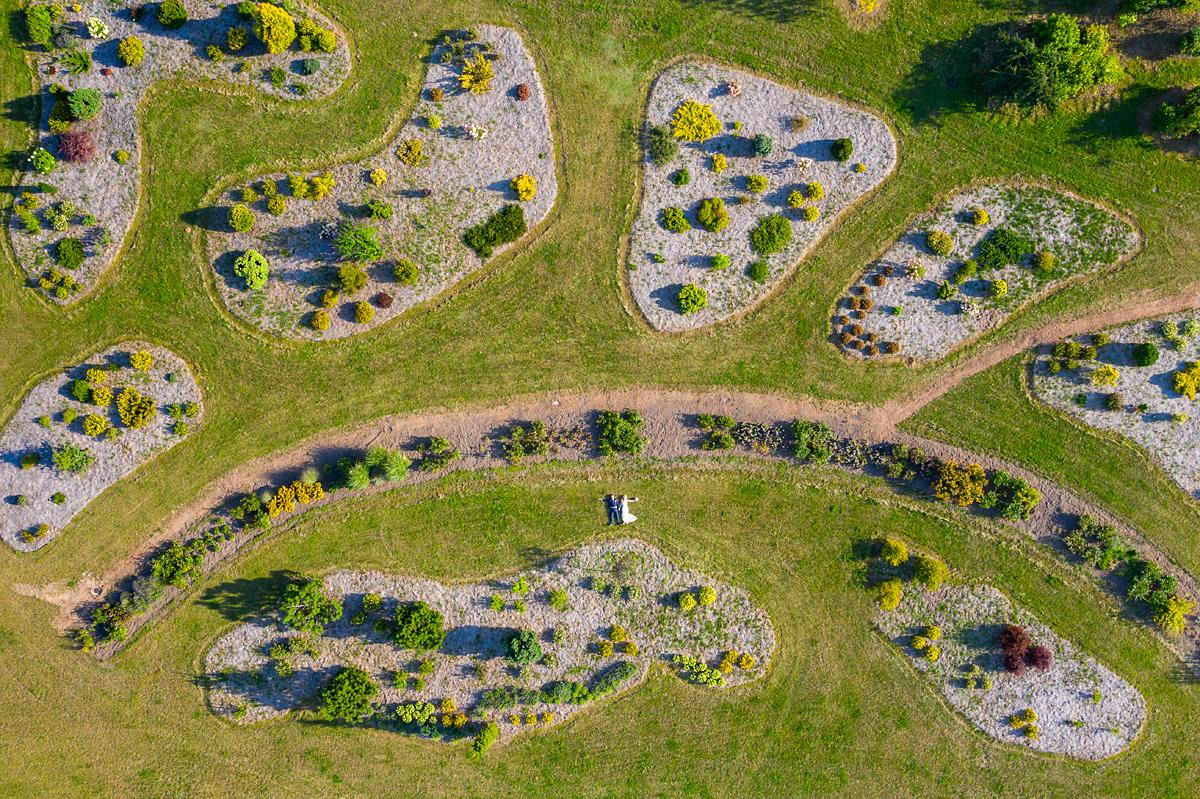 vestuvių fotografas su dronu, vestuvės su dronu, dronas vestuvėse, botanikos sodas, Kairėnai